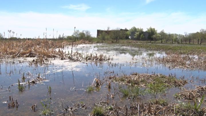 Опасное явление: в Зейском районе уровень воды продолжает подниматься