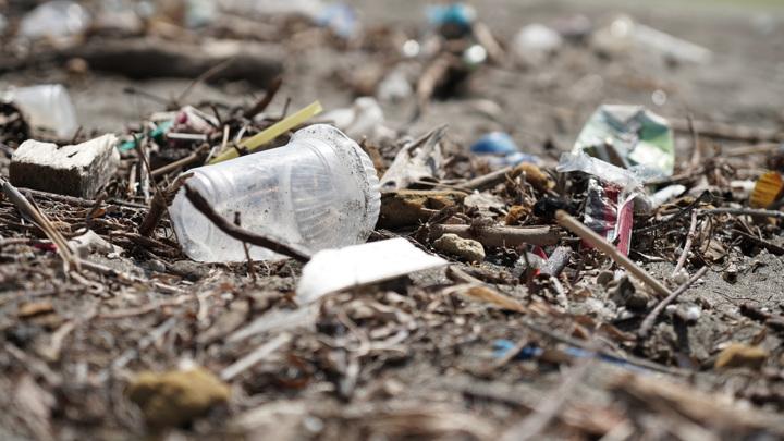 За выброс мусора из окон машины будут штрафовать