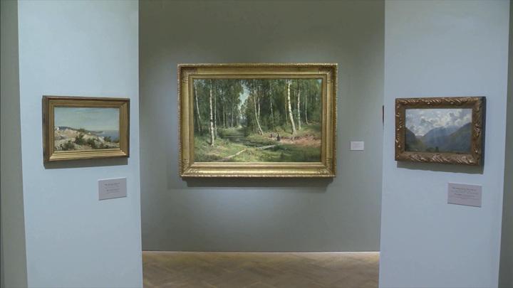 Выставка работ Ивана Шишкина открылась в Русском Музее