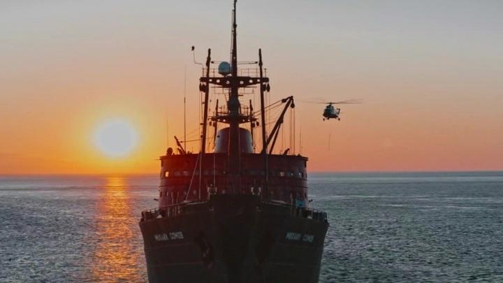 """Морские единороги: находка экспедиции """"Газпром нефти"""""""