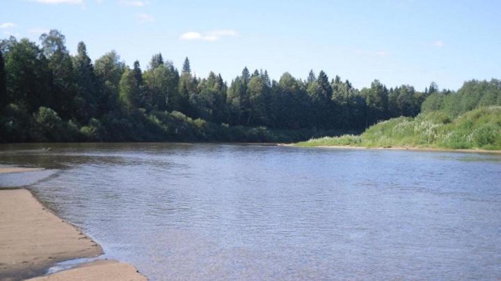 Утонул, спасая детей. Профессор из Москвы погиб в Костромской области