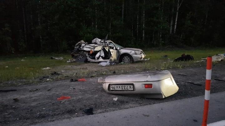 Появление лося на трассе привело к гибели семьи из трех человек
