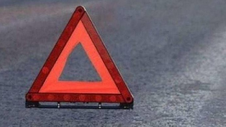 Удмуртия: из-за укуса водителя пчелой в ДТП пострадали 10 человек