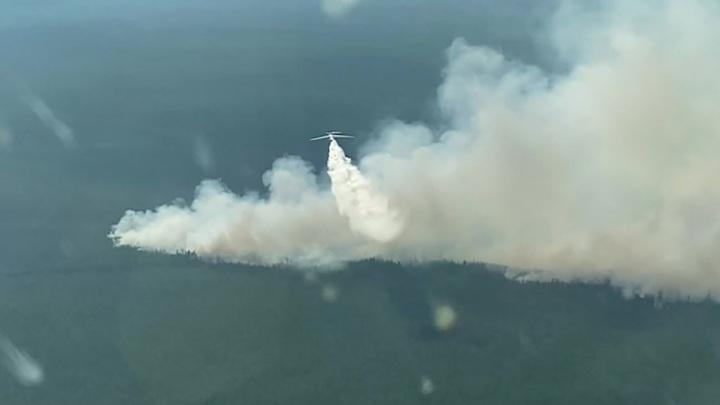 Авиация МЧС сбросила более 8 тысяч тонн воды на горящие леса в Якутии