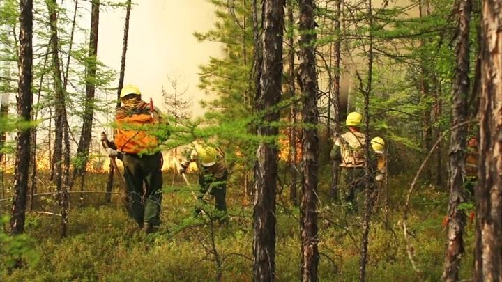 В Якутии за сутки ликвидировали 27 природных пожаров