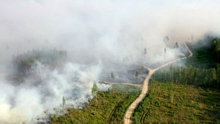 Пожары в Якутии: на помощь спасателям придут дожди