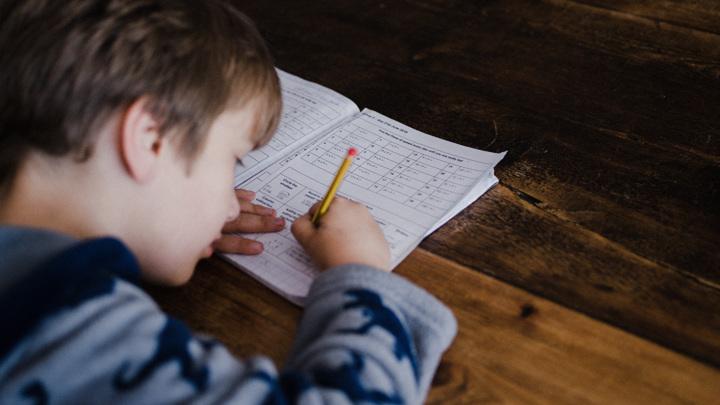 Успех обучения во многом зависит от химических реакций, которые происходят в нашем мозге.