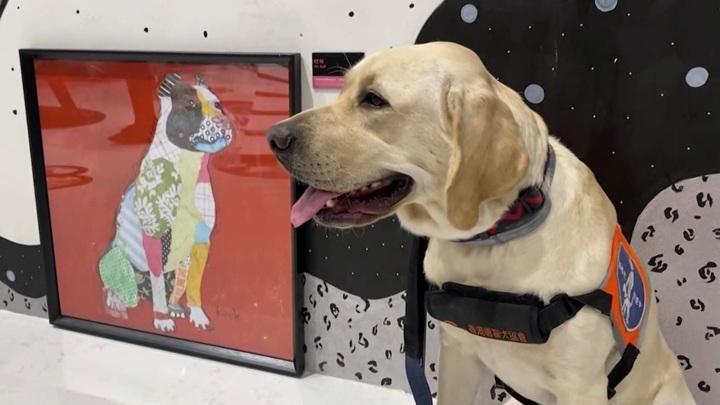 Великая сила искусства. В Гонконге проходит цифровая выставка для собак