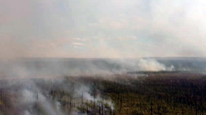 Для защиты села в Якутии от лесных пожаров направили дополнительные силы