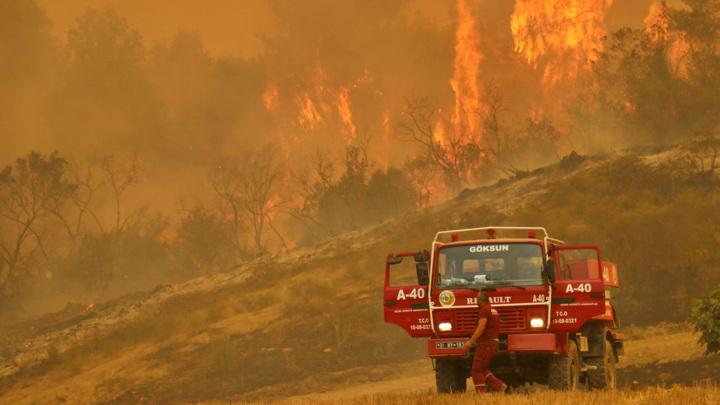 Более 180 человек пострадали из-за лесных пожаров на юге Турции