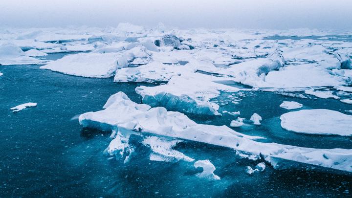 Таяние арктических льдов приводит к тому, что в океане повышается концентрация ядовитых веществ.