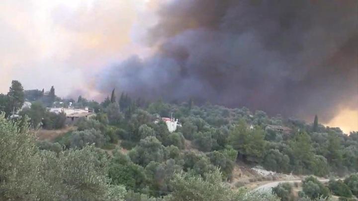 Суд Турции освободил из-под стражи граждан России, связанных с поджогом леса