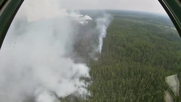 Авиация Минобороны сбросила 6 тысяч тонн воды на лесные пожары в Якутии