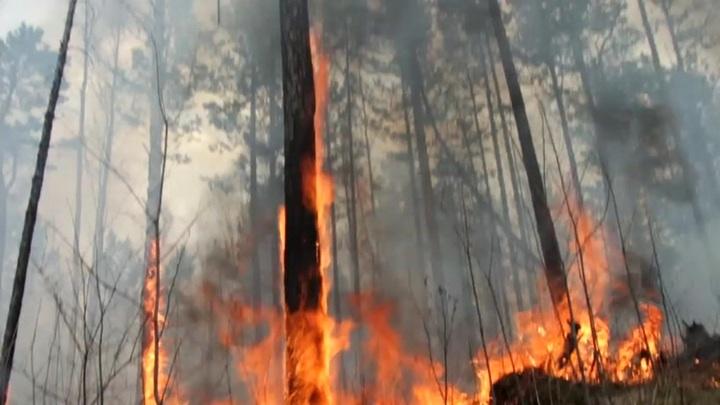 В Якутии сохраняется сложная пожароопасная обстановка