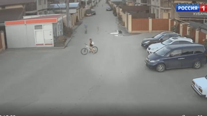 Преступник на свободе: в Краснодаре ротвейлер разодрал ребенку лицо