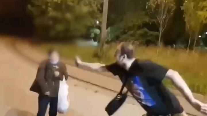 Арестован второй участник нападения на женщину в Измайловском парке в Москве