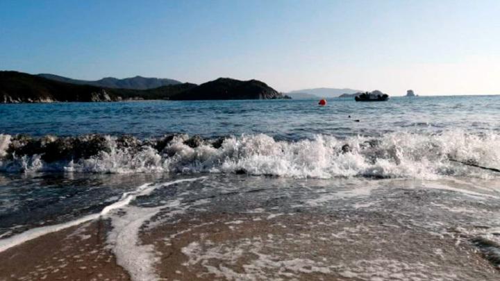 """Страшно в море заходить"": жители Находки поймали в воде мерзкое существо"