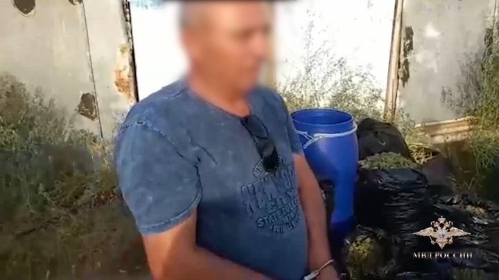 Под Волгоградом задержаны наркоплантаторы