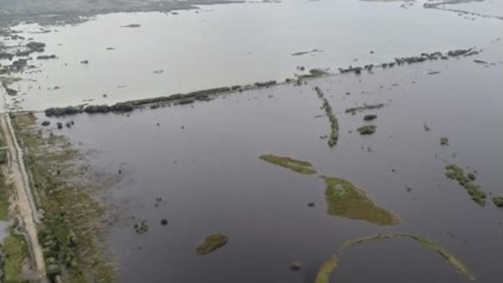 Прогноз гидрологов: гребень паводка должен выйти в Амурский лиман к 15 сентября