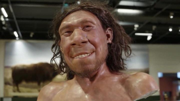 Палеоантропологи реконструировали лицо неандертальца, жившего более 50 тысяч лет назад