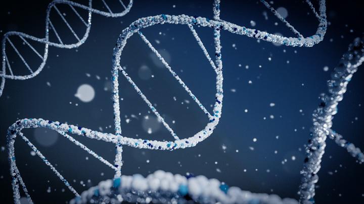 Мутации, идущие на пользу организму, встречаются учёным достаточно редко.
