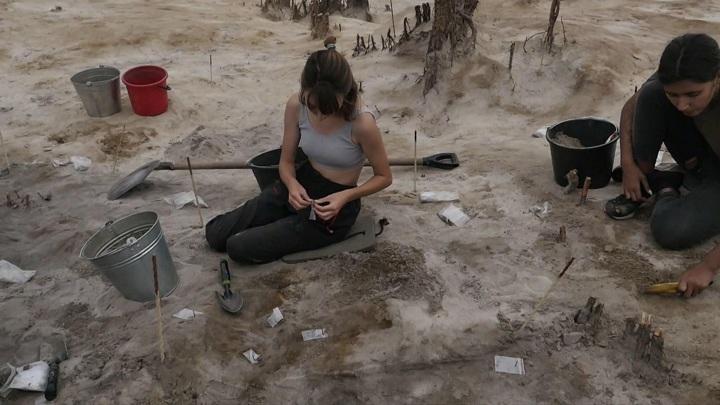 Во время строительства скоростной трассы были найдены уникальные артефакты