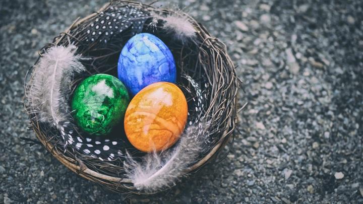 Саратовские куры несут уже готовые к Пасхе яйца