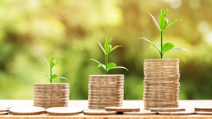 Самая низкая годовая инфляция в ПФО зафиксирована в Марий Эл