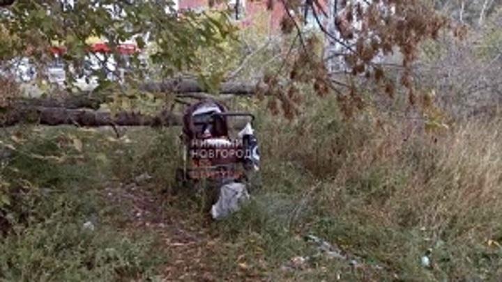 В Нижнем Новгороде прохожие нашли в коляске 8-месячного малыша