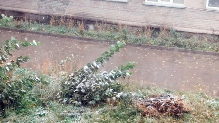 Новосибирцы в шоке от выпавшего в сентябре первого снега