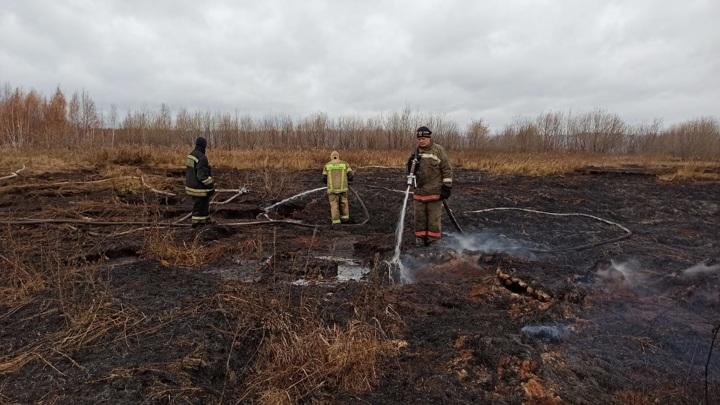 Торфяной пожар в Екатеринбурге ликвидирован