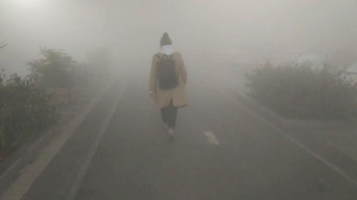 Дым от тлеющего в Екатеринбурге торфяника добрался до Челябинской области