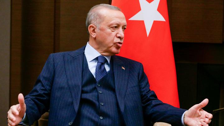 Эрдоган передумал высылать иностранных послов