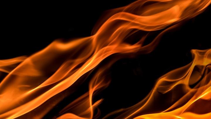 Шалаш с человеком внутри сгорел в Ивановской области