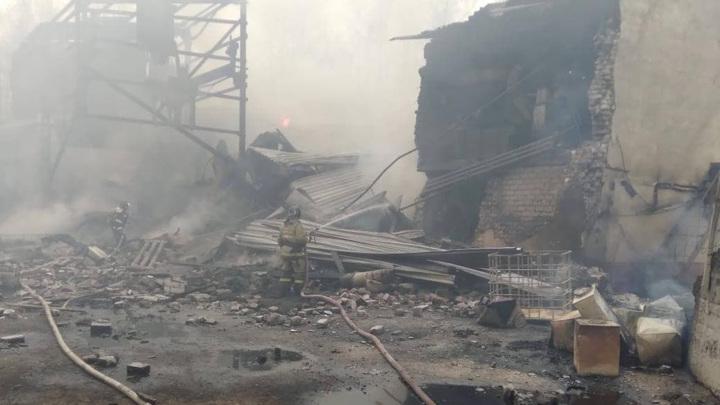 Врио министра МЧС России прокомментировал взрыв в пороховом цеху в поселке Лесной