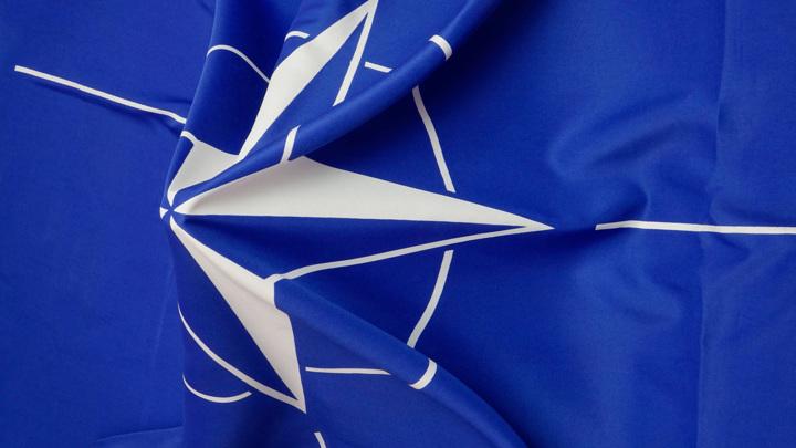 Сближение Украины с НАТО: что сделает Россия