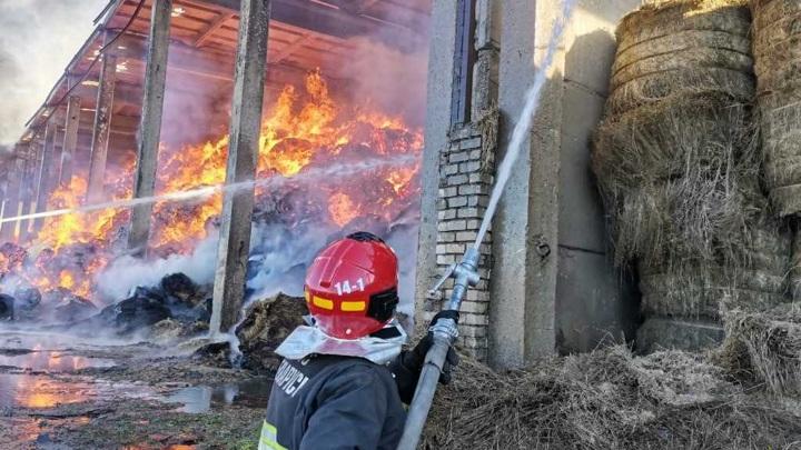 Спасатель скончался на пожаре в Белоруссии