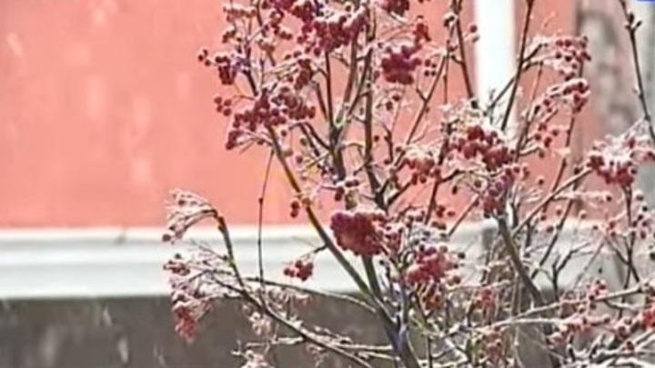На Ставрополье похолодает до минус четырех