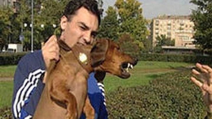 Собака - друг режиссера